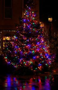 Christmas tree in Port Townsend - photo by Steve Mullensky